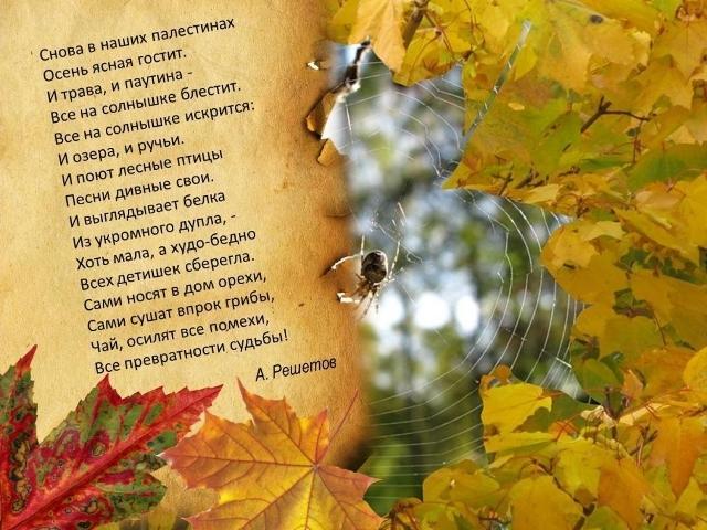 Стихи про осень лучшие стихотворения об осени